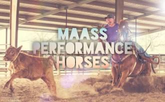MaassPerformanceHorses.jpg